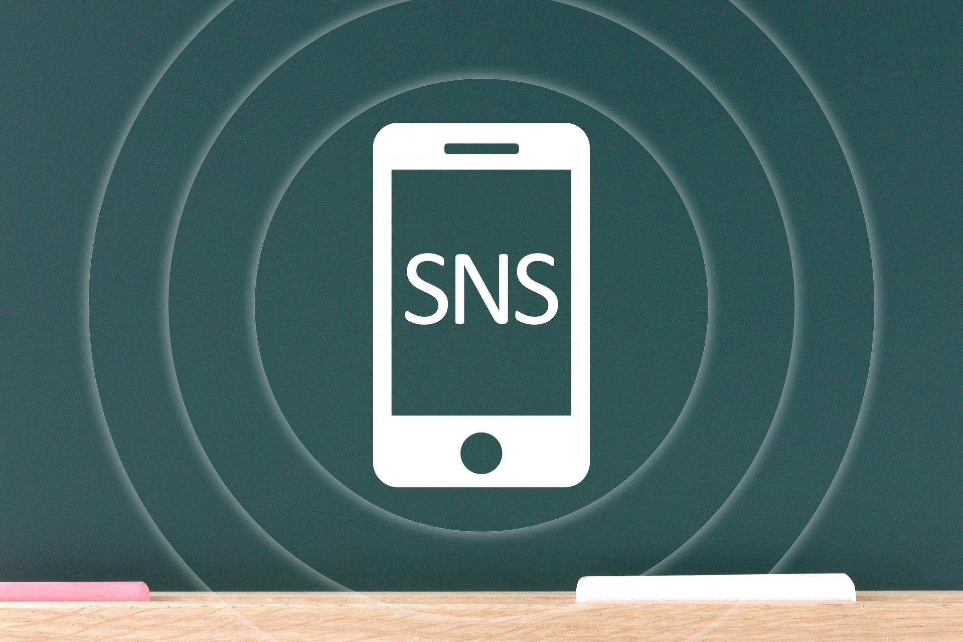 SNS広告のメリット・デメリット(LPO Web広告編)